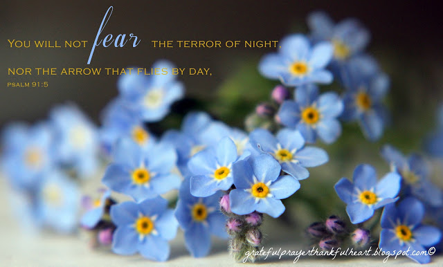 Psalm 91 is beautiful and encouraging, assuring us of God's protection and care. Each verse from this psalm is illustrated with a beautiful flower photo. Lovely to reflect on remembering we are not alone even through the hard things.