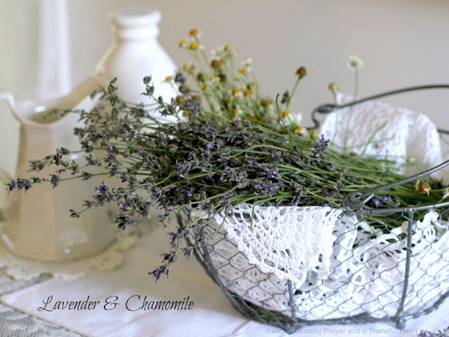 Easy recipe for glazed Sweet Lavender Scones delicious with coffee or tea. Lavender buds impart a mild floral hint that is unique but not overpowering.