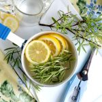 Propagating Perennial Herb Rosemary and making Simmering Potpourri