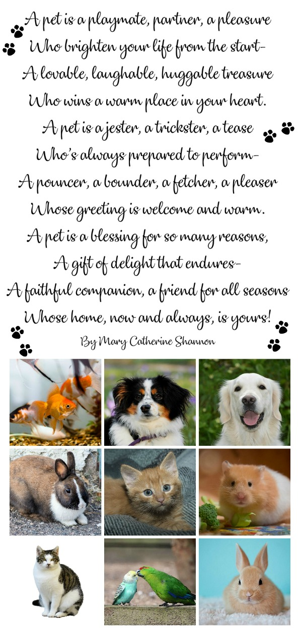 Those that have and love their pets don't need a special day to celebrate them. They are well aware of the fun, love and companionship pets bring. But, since today is National Pet Day, an unofficial holiday, I thought I'd share a FREE printable poem and some quotes.