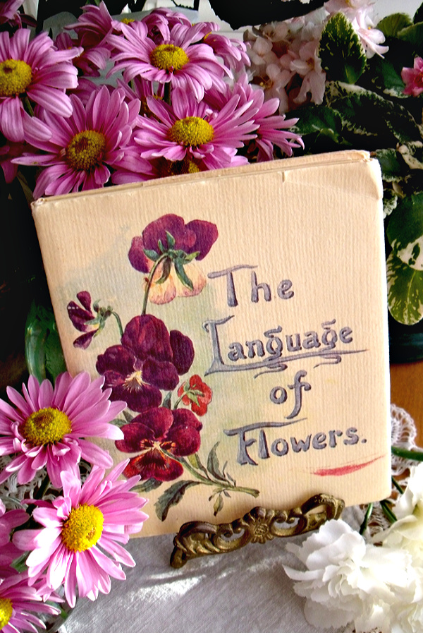 The Language of Flowers, written by 'Father' to 'Mother' August 8, 1913, is a sweet little dictionary of over 700 flowers and reminiscent of a gentler era.