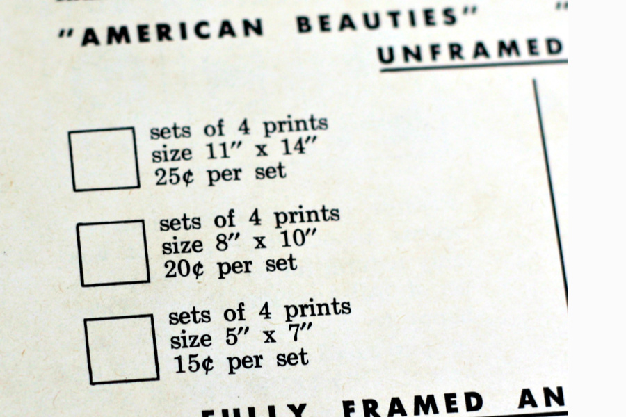 History of Northern Paper Mills, pamphlet with info on illustrator of American Beauties and All American Boys, Frances Hook.