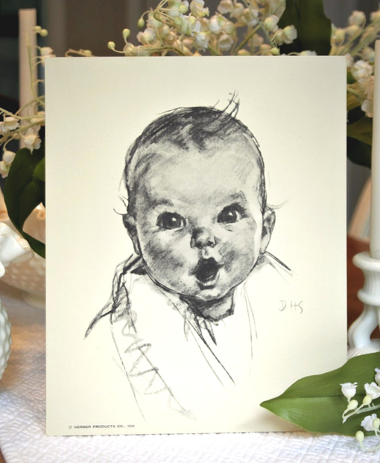 The Gerber Baby by Ann Turner Cook