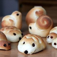 Hedgehogs and Turtles and Snails, Oh, My! Cute Yeast Bread Dinner Rolls