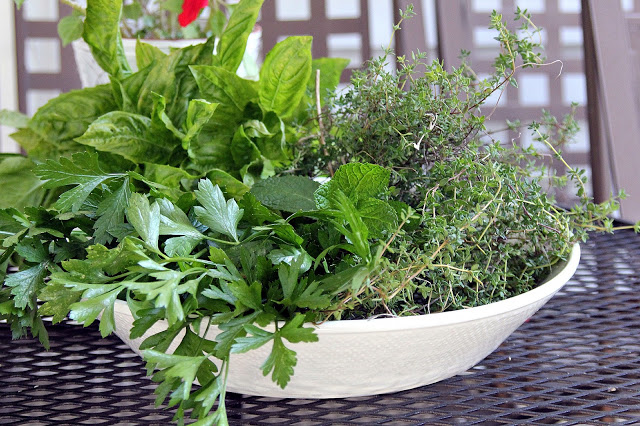 Gather those herbs as the autumn garden begins to fade to enjoy throughout the winter months. Suggestions for drying and freezing.