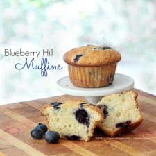 Blueberry Hill Muffins