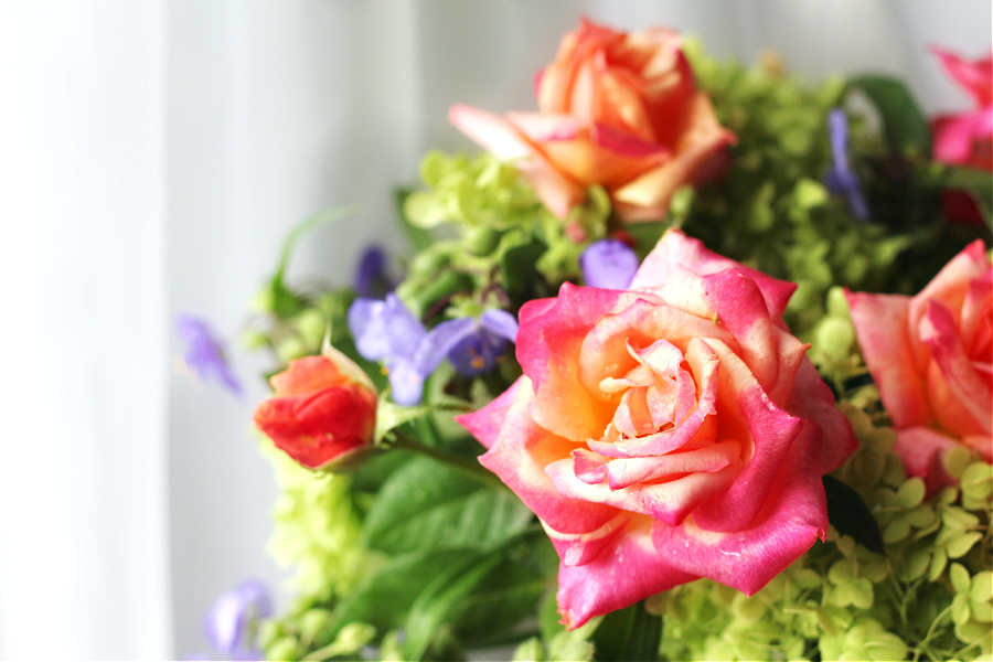 Roses, hydrangea and purple spiderwort fill a vase for a late summer centerpiece