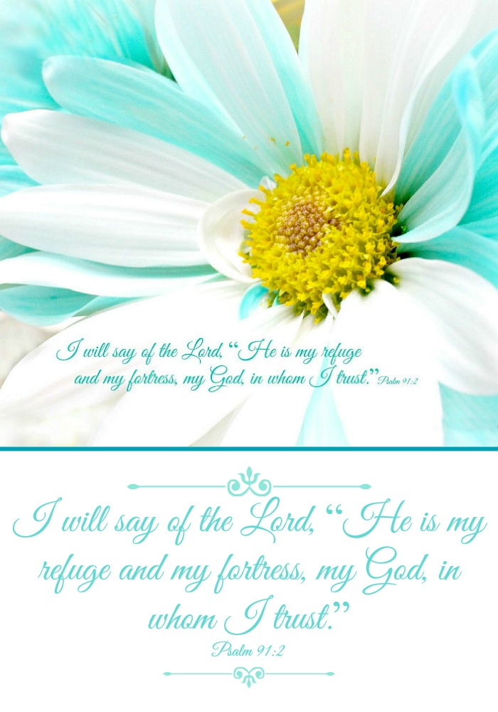 Are you good at memorizing Scripture? I am working at learning Psalm 91. Every verse is beautiful and so encouraging.