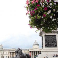 Anniversary Adventure LONDON