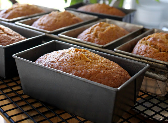 Delicious pumpkin quick bread full of cinnamon, nutmeg, cloves & ginger. Perfect mini loaves to share with friends. Bake ahead & freeze for Thanksgiving.