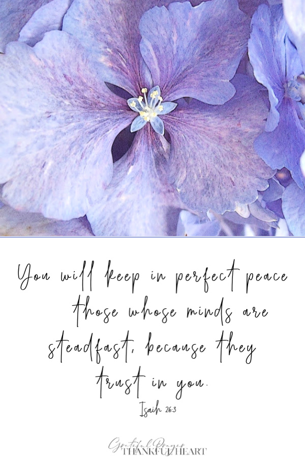 You will keep in perfect peace those whose minds are steadfast, because they trust in you. Isa 26:3 comforting Bible verse for fear and anxiety.
