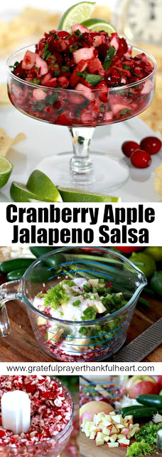 Cranberry Apple & Jalapeno Salsa is colorful, fresh and incredibly good! A festive appetizer that your guests won't be able to stop eating.
