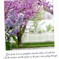 God speaks to me in Springtime