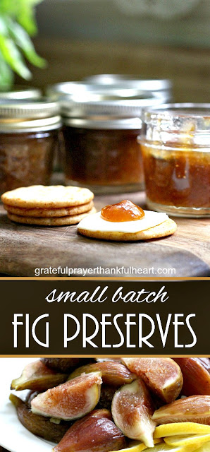 Fig preserves made from figs harvested from backyard fig tree is easy to make and delicious on muffins, toast and even with crackers and cheese.