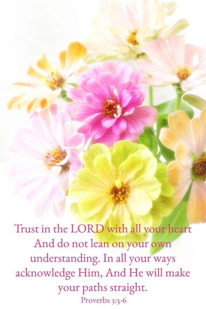 Trust in the Lord and lean not on your own understanding Proverbs 3 5 to 6