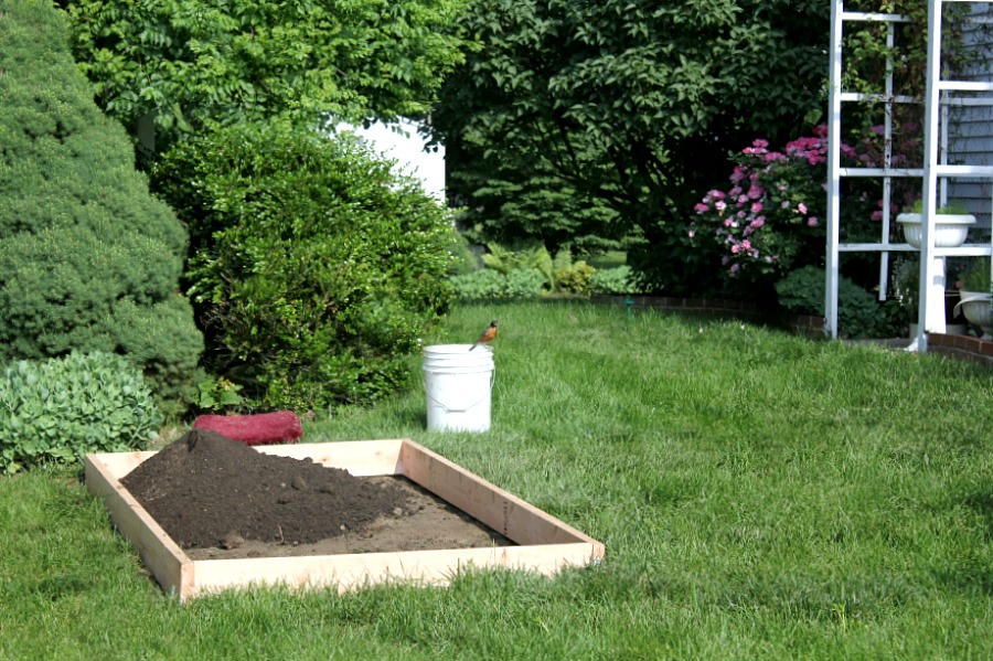 Raised Bed Gardening Tips for enjoyable and productive kitchen herbs, flower and vegetable growing in a small space. Fun and rewarding experience for kids too.