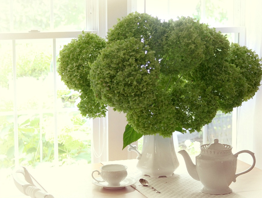 Chartreuse green snowball hydrangea floral centerpiece for drying