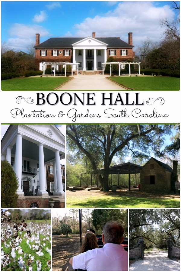 Boone Hall Plantation, located in Mount Pleasant, South Carolina is a must-see attraction when visiting Charleston. A working plantation with southern charm features the beautiful Avenue of Oaks, 9 original slave cabins, a colonial revival 1936 mansion tour and Gullah culture theatrical performance. Used in the filming of North and South, Queen, the Tempest, and The Notebook. Great day for kids and adults alike..