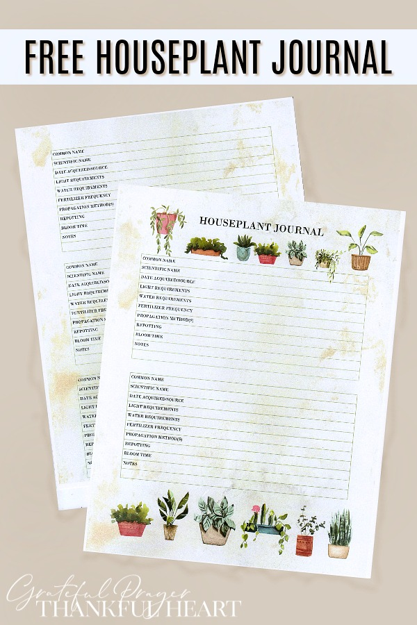 Growing plants has so many benefits, providing a pleasurable hobby while adding beauty to your living space. This FREE houseplant journal is great for beginners to keep track of each plant but is also helpful as your collection grows, determining the best care requirements for each new green baby you bring into the family.