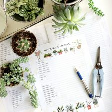 Houseplant Journal