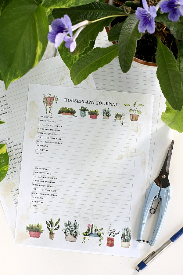 Super useful plant journal for keeping track of indoor houseplants and the care each one requires for healthy and beautiful growth. Perfect for beginners wanting to learn and enjoy each new plant acquired. Free printable download.
