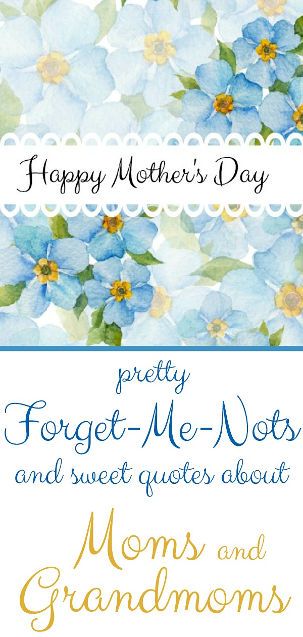 Mother's day inspiration quotes on strength, encouragement and hope we have received from Grandmom or grandmother and Mom.