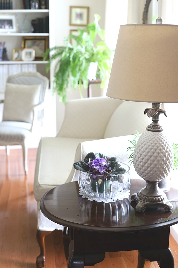 Growing indoor houseplants is a rewarding experience and adds much to the home décor. Fill in empty spaces as you create a welcoming environment. Many plants have low-light and easy care requirements.