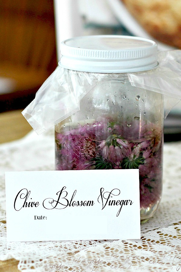 Edible and pretty, the blossoms from your chives make a nice herbal vinegar. Chive blossom vinegar has a mild onion flavor and is a sweet gift to share with friends.