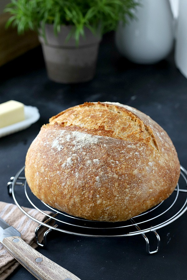 Homemade rustic bread with a crusty exterior and deliciously chewy center with easy almost no-knead recipe from Cooks Illustrated.