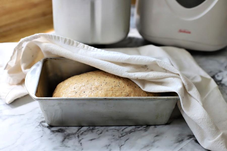 Bread dough second rise
