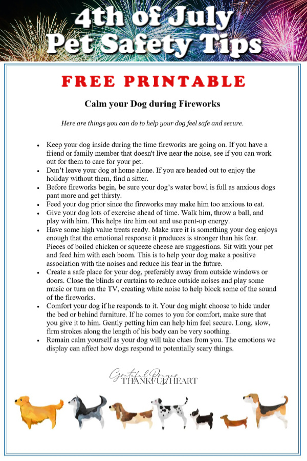 Fireworks can cause fear, anxiety and even traumatize a dog. Print out this FREE guild with helpful safety tips to calm your dog when he is afraid or scared during 4th of July displays and celebrations.