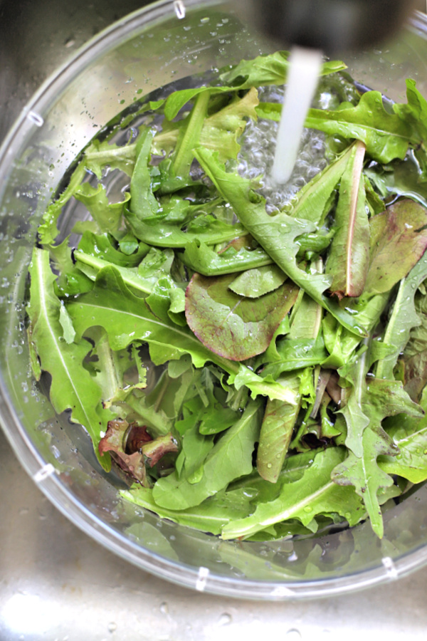 How-to for when and how to plant, pick and harvest for fresh and healthy salads.