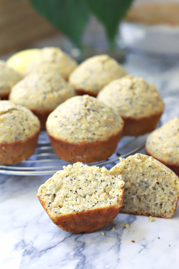 homemade poppy seed muffins