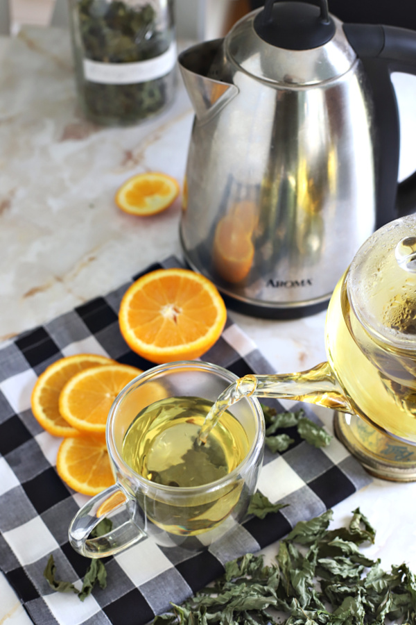 orange mint tisane from herb garden plant that is harvested and dried.